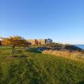 Concordia campus bluff