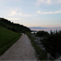 Pictured: The Bluff Walkway that leads to Lake Michigan